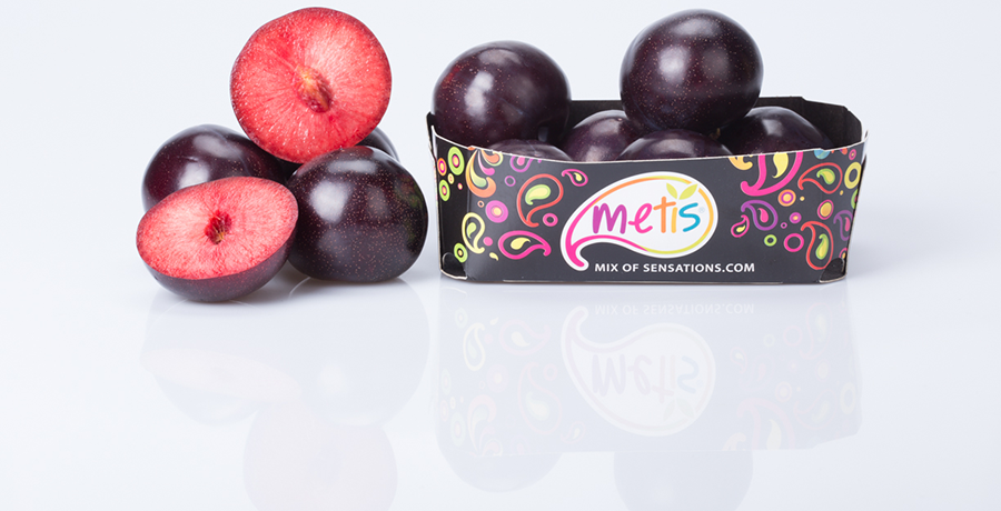 Metis® Plums: A Very High Quality Variety